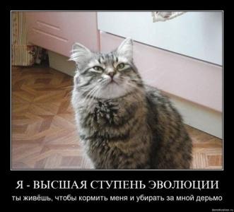 КЛЁВО