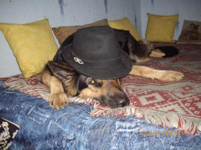 Эх. и шляпа у меня!