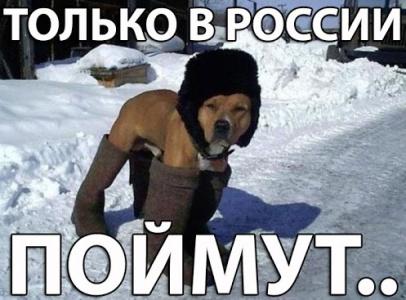 Россияне поймут!