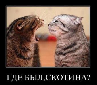 семейная разборка)))