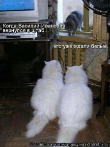 Засада)))