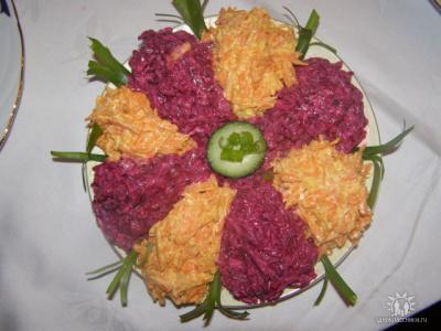 Салат-семицветик(вар.свёкла,чуть-чуть чеснока,заправить майонез)(с морковью  также