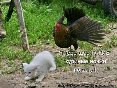 конфликт...