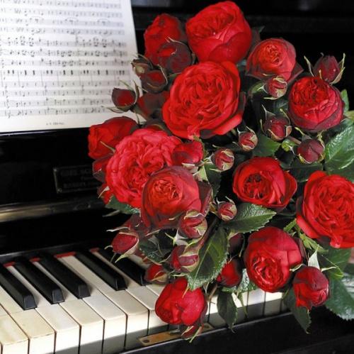 Открытка с днём рождения пианисту 4