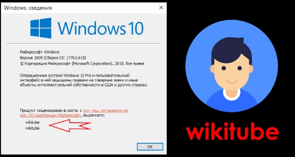 Как изменить зарегистрированного владельца и организацию в Windows 10