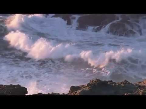 Скрипка и море....Edvin Mart…