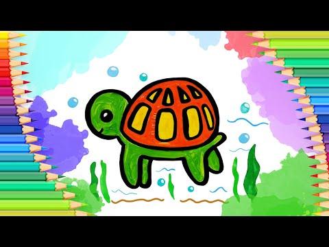 Как нарисовать черепаху для …