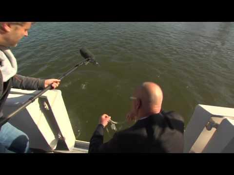 Журналистка упала с яхты прямо во время интервью