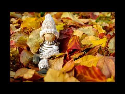 Золотая осень от Михалыча
