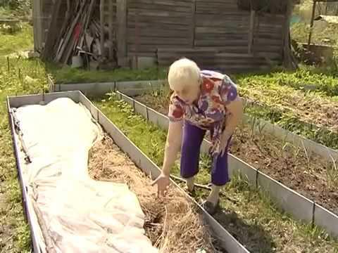 Огород для Емели))