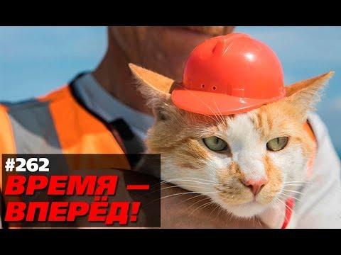 Вот как Крымский мост повлиял на Россию. Кто-то ждал другого? (Время-вперёд! #262)