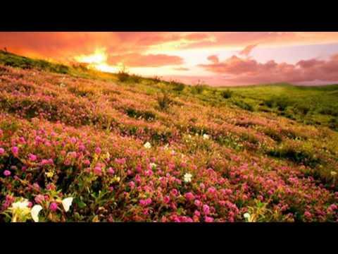 """Удивительно красивая музыка - Джеймс Ласт """"Жизнь прекрасна"""""""