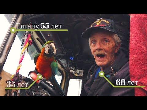 Старик-дальнобойщик с попуга…