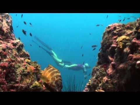 Подводное видео. Фридайвер
