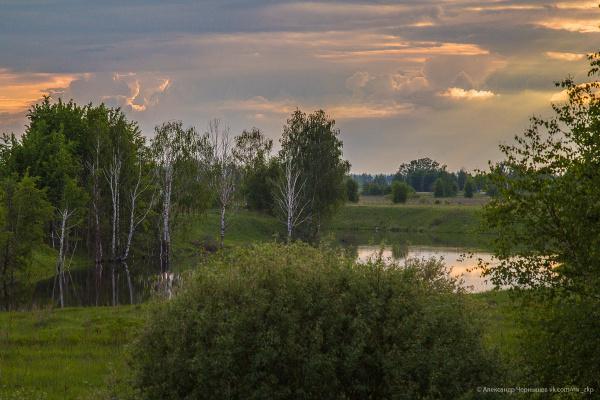 Ярославская область. Родные места
