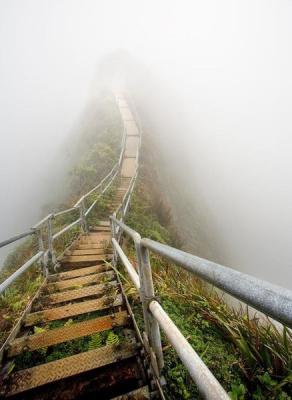 туман-мост