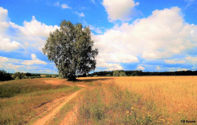 Деревенские дороги