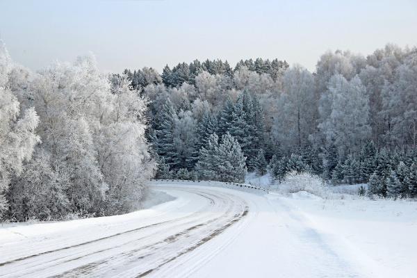 Сибирь, Красноярский край. Дорога в сказочный лес.
