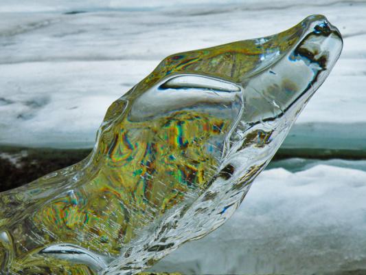 Ледяной крокодил