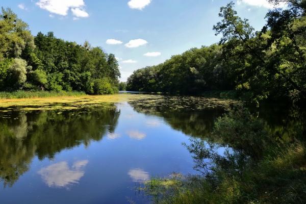 река Псёл
