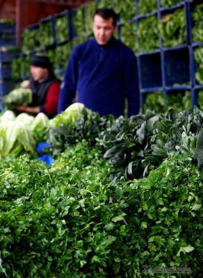 Зелёный базар