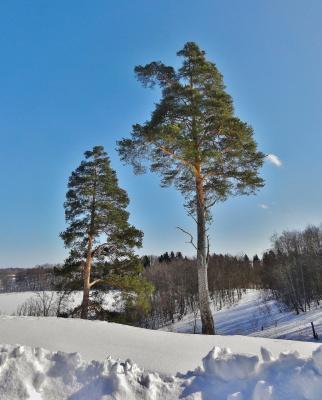 А у нас еще зима ....
