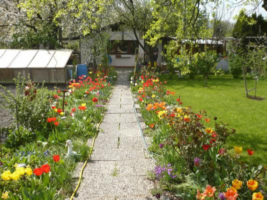 Весна 2011 049