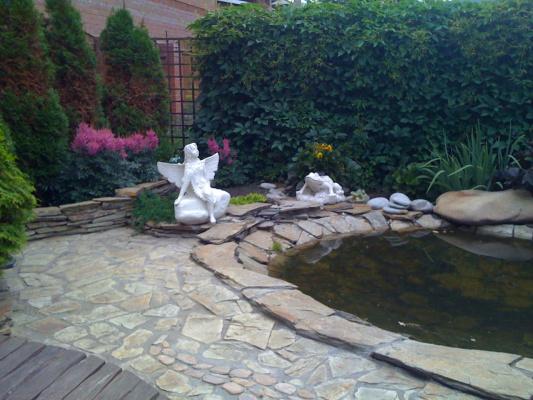 прудик в моем саду