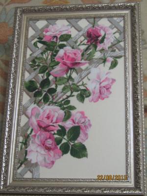 Розы на решетке