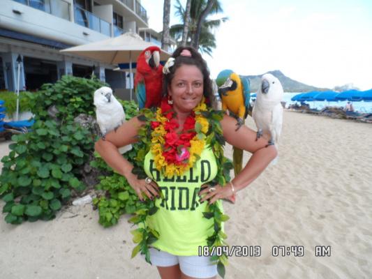 Я и великолепные попугаи