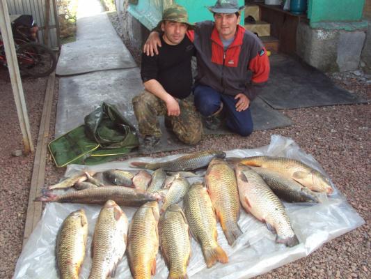 рыбалка в волглдонске
