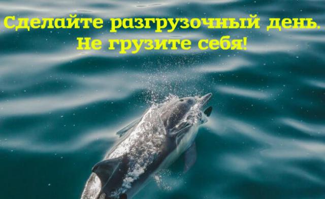 pozitivnye_kartinki_5