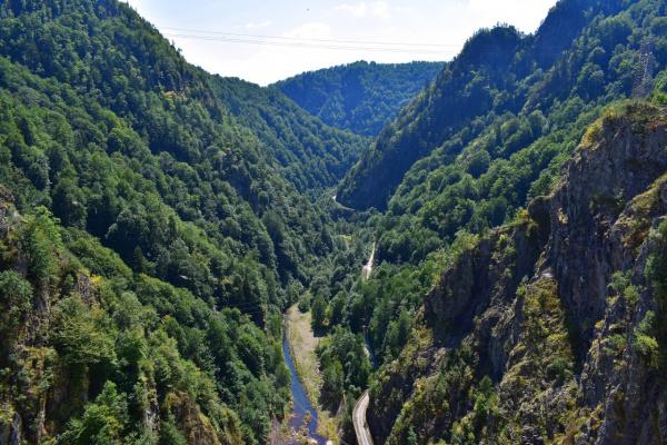 Ушелье  реки Арджеш