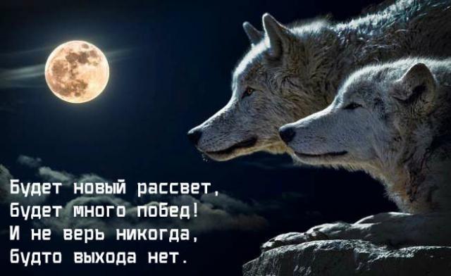 pozitivnye_kartinki_15