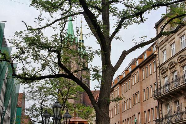 Немецкое дерево