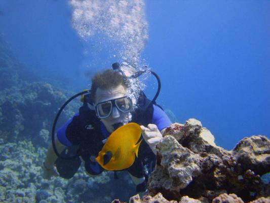 Красное море 25 метров