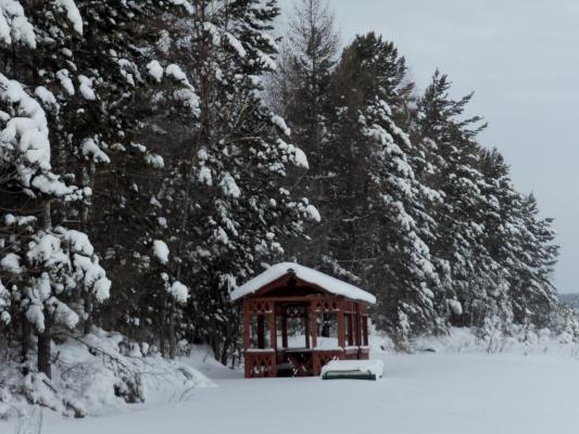 Зимняя красота Сибири.