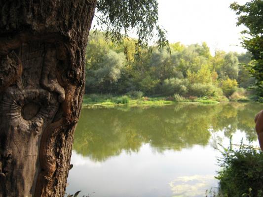 озеро в Луганской области