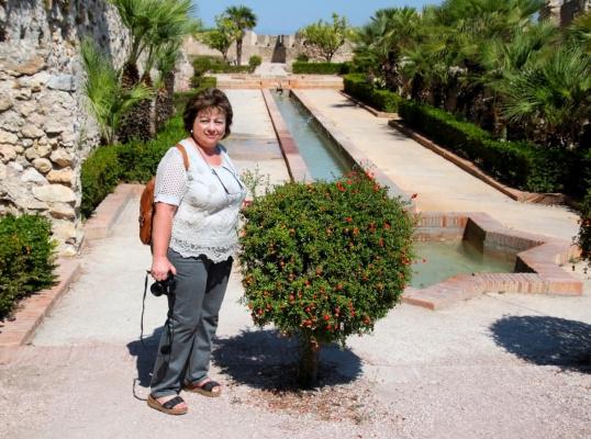 Гранатовое деревце