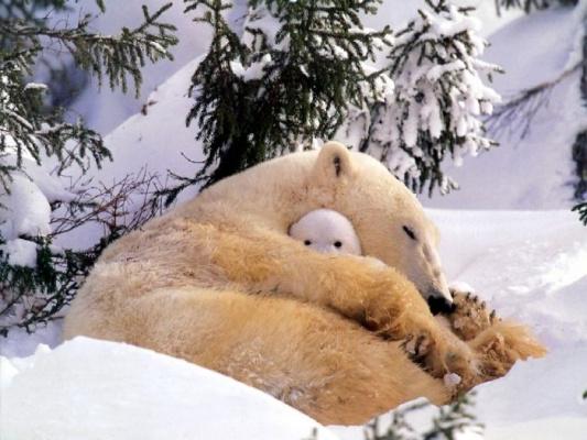 тепло у мамы