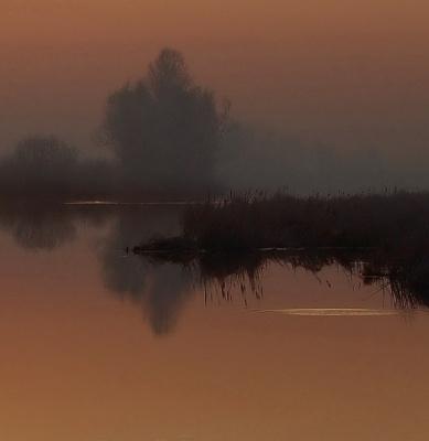 Туманный вечер...