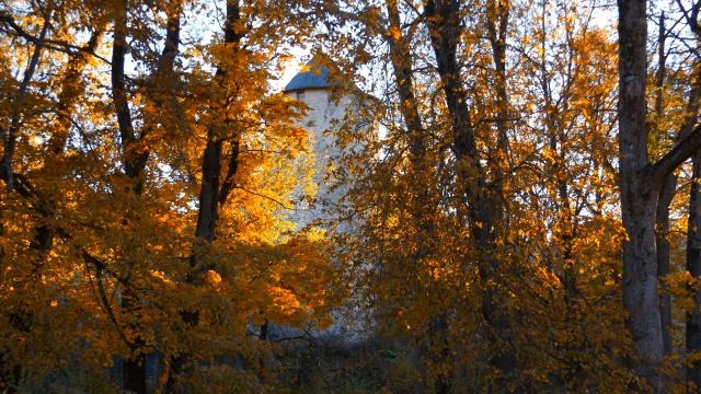 Осень у башни