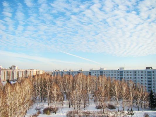 Третий день календарной зимы!