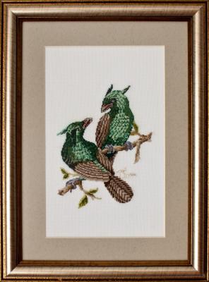 «Рогатые птицы»