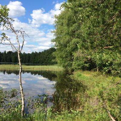 На Серебряном озере. (Селигер)