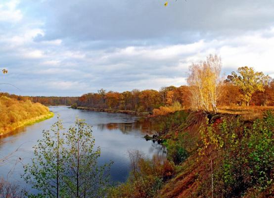 Золотая  осень  на  Березине.