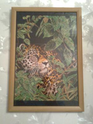 Ягуар в джунглях.