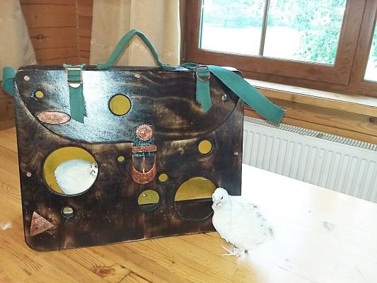 Портфель-кормушка из фанеры