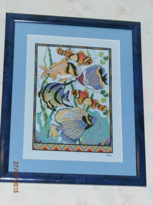 Цветные рыбки