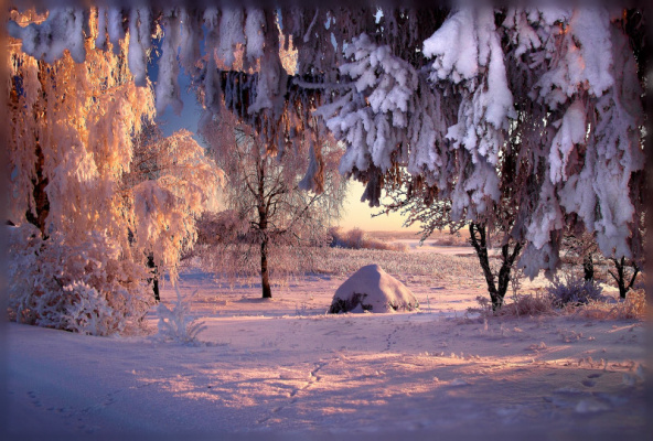 Снежная сказка...